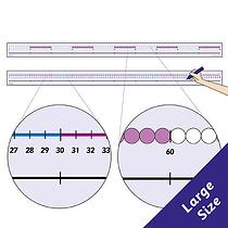 Number Line 0-100 (100cm x 6cm)