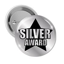 Silver Award Badges (10 Badges - 38mm)