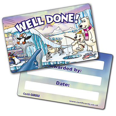 Well Done  CertifiCARDS - Polar Scene (10 Cards - 86mm x 54mm)