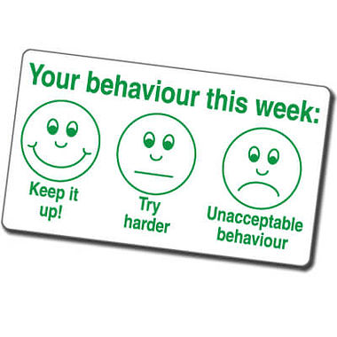 Your behaviour This Week' Faces Stamper - Green Ink (42mm x 22mm)