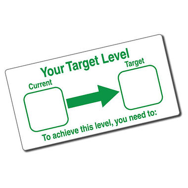 Your Target Level Stamper - Green Ink (42mm x 22mm)